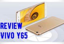 Review Vivo Y65