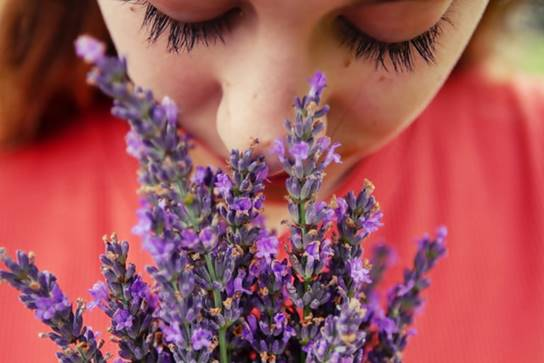 Latihan Penciuman Untuk Anosmia